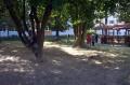 Areál školy
