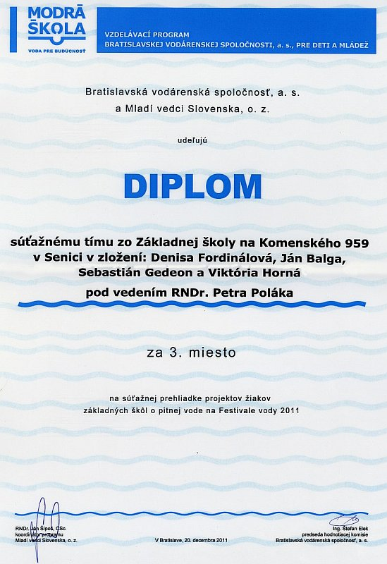 diplom-111220-ms-_tim.jpg