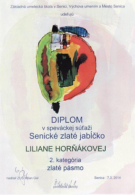 diplom-140307-hornakova.jpg